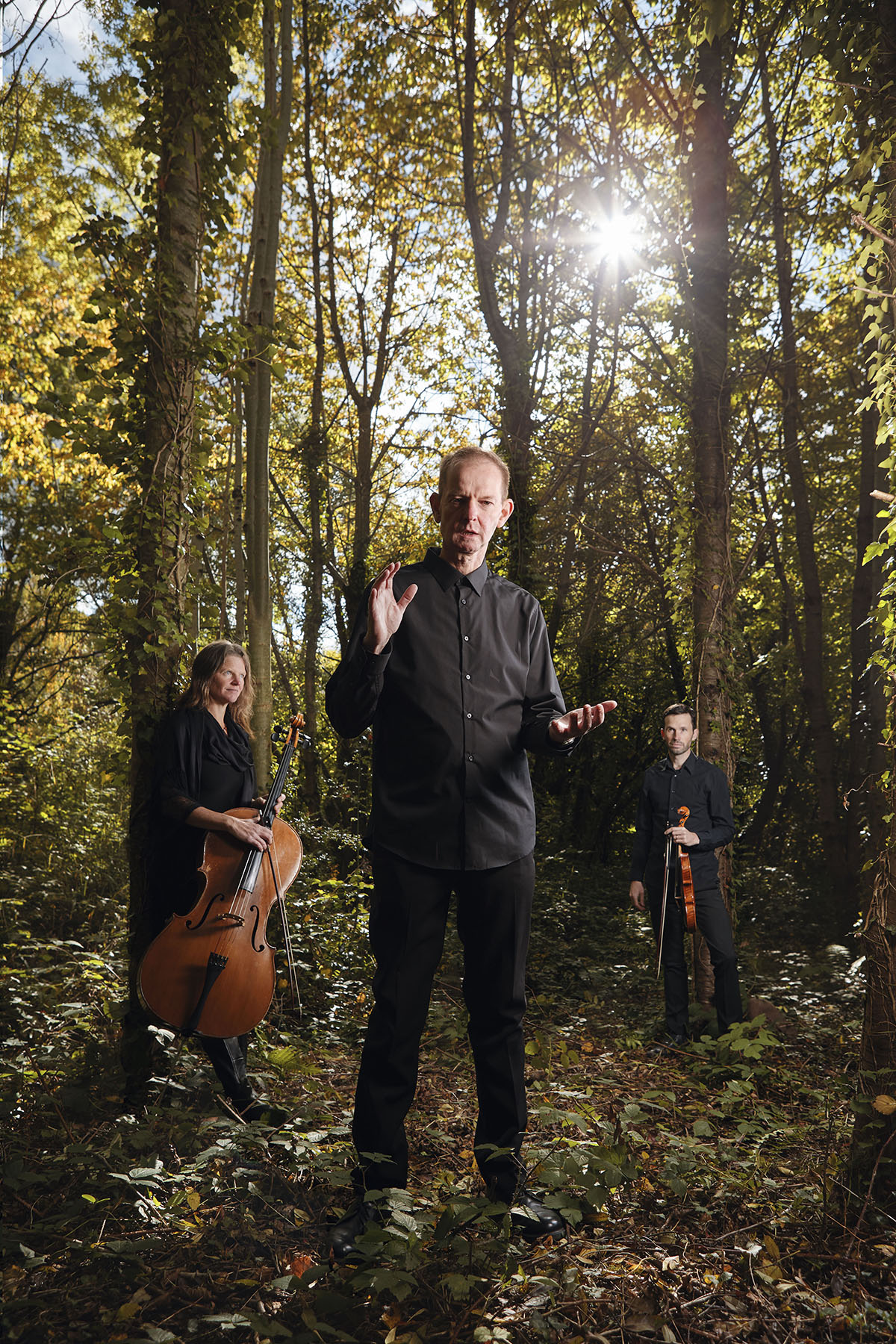 The-Devils-Violin-Forest-LEAD.jpg